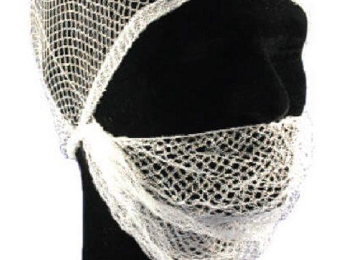 2969 Close Mesh Beard Net